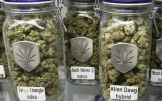 BeFunky_Legal-marijuana-products-in-Colorado-1024x768.jpg
